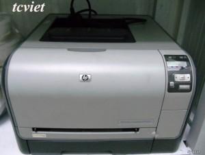 Máy in laser màu HP 1515N cũ